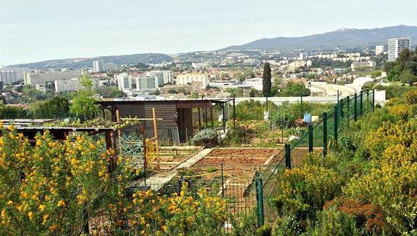 jardin-partage-parc-moline-
